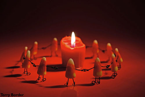 Candycorn Cult by Terry Border